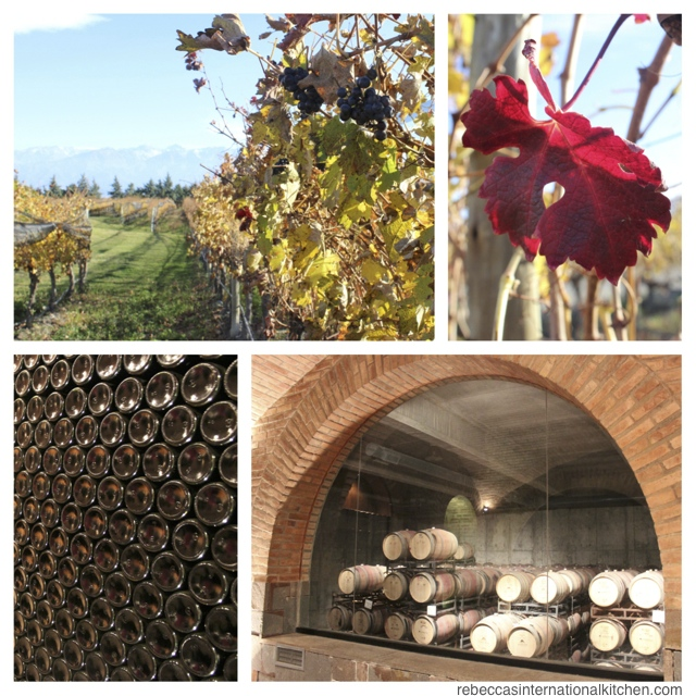 Mendoza's Best Atmosphere: Andeluna Cellars