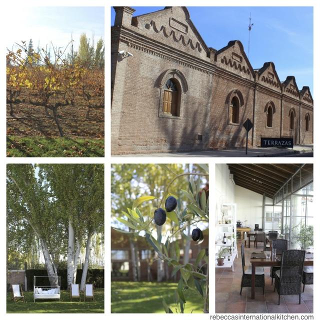 Mendoza's Best Architecture and Landscaping: Terrazas de los Andes