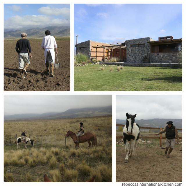 Las 10 mejores experiencias en bodegas en Mendoza, Argentina