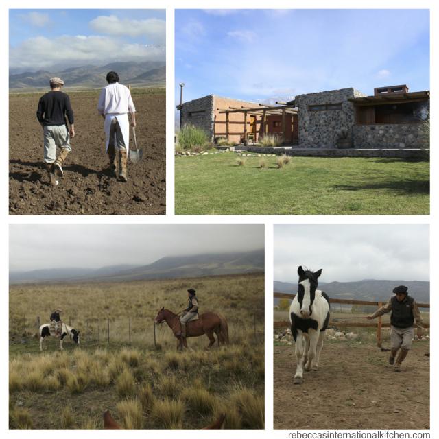 Mendoza's Best Ranch: Estancia La Alejandra
