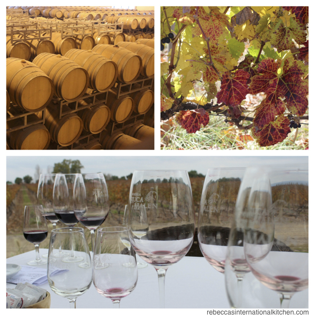 Wine Tasting in Mendoza, Argentina
