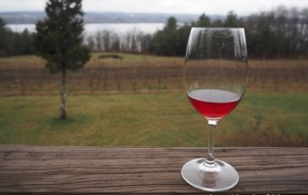 Exploring the Finger Lakes: The Best Wineries & Breweries Around Seneca Lake