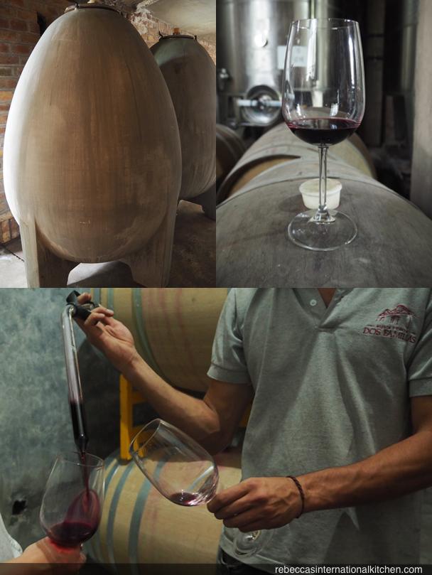 Mendoza Wine Camp - Lujan de Cuyo Wine Tour